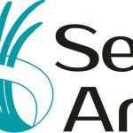 """Project """"SeaArt"""""""